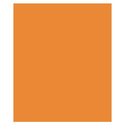 icon 22 1
